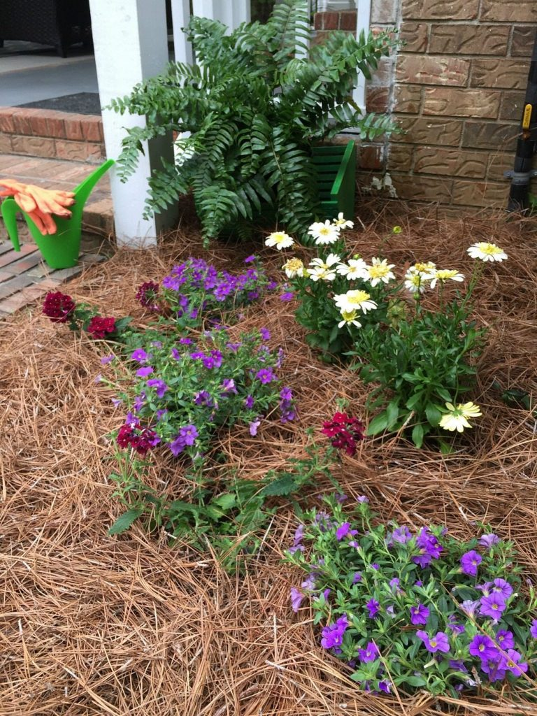 add straw or mulch to help control moisture in warm climates
