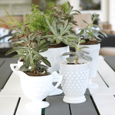 Vintage Milk Glass Succulents