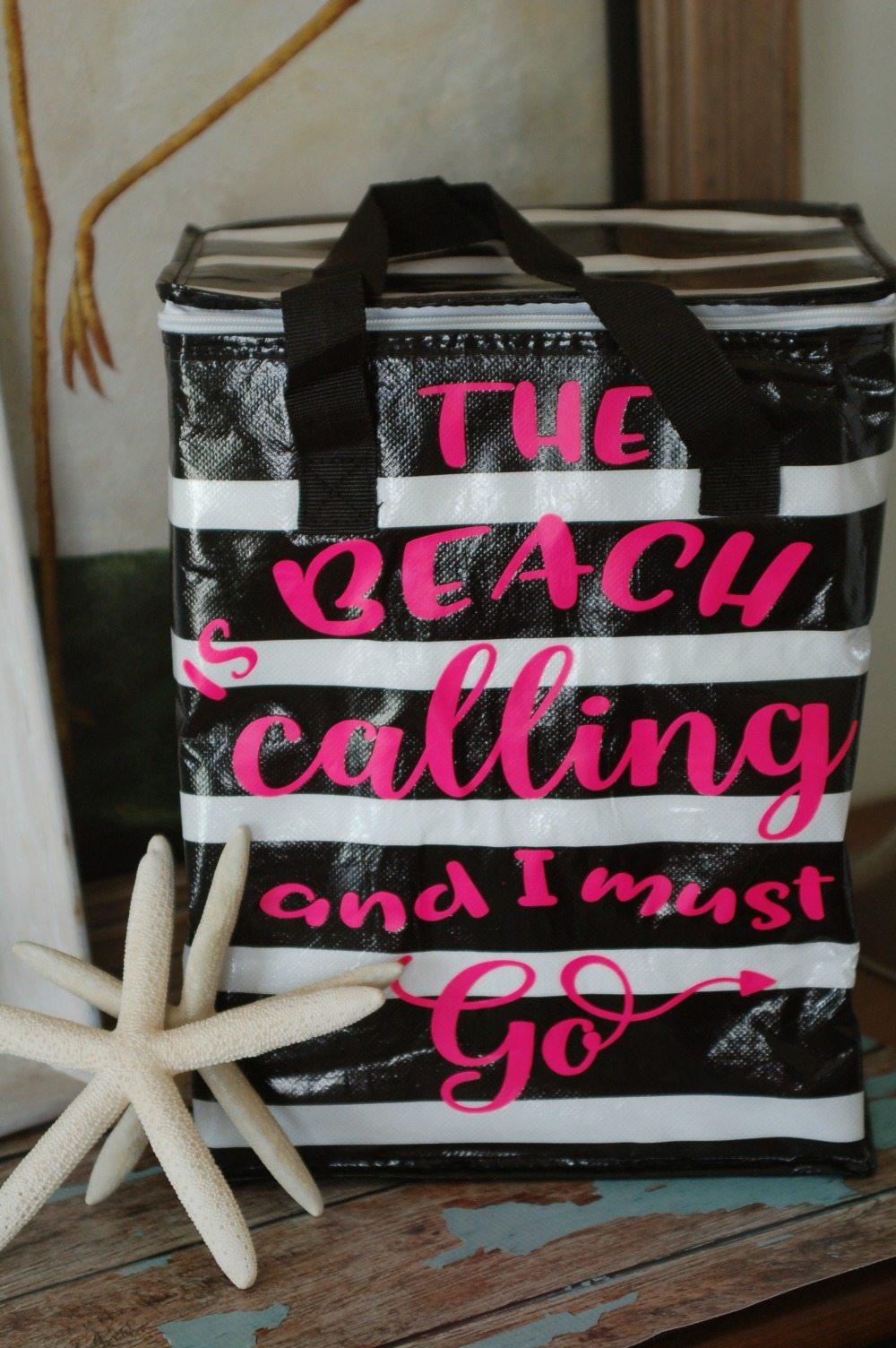 Insulated Walmart bag is now my beach bag