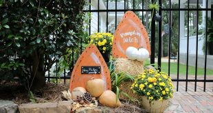 Fun idea for the yard fall harvest signs with lights
