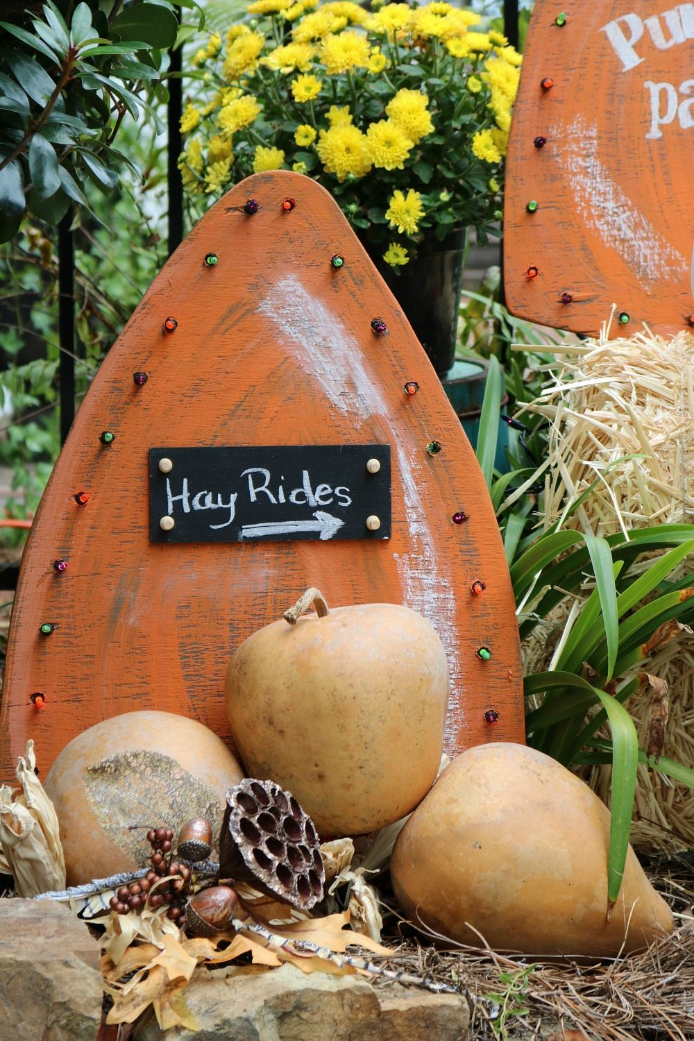 Great idea for fall make these harvest yard signs