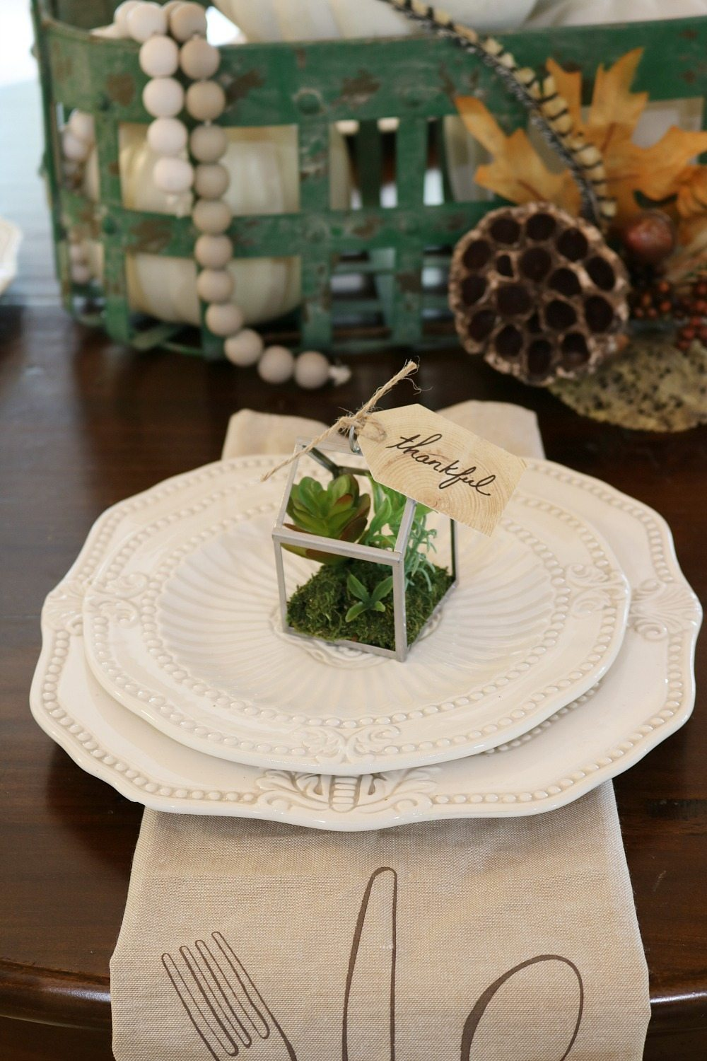 Tiny green house filled with succulents for fall table