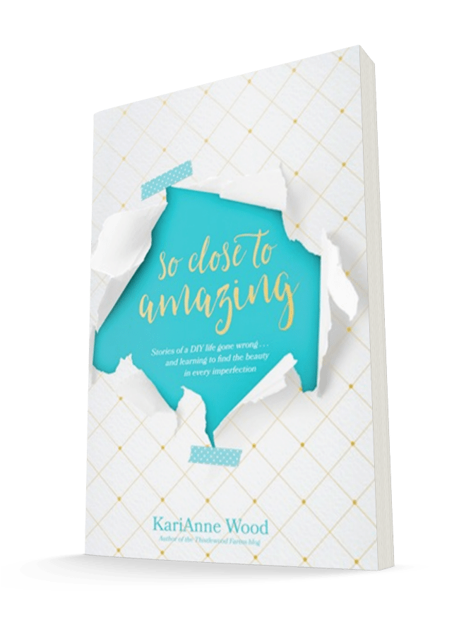 So Close to Amazing by KariAnne Wood