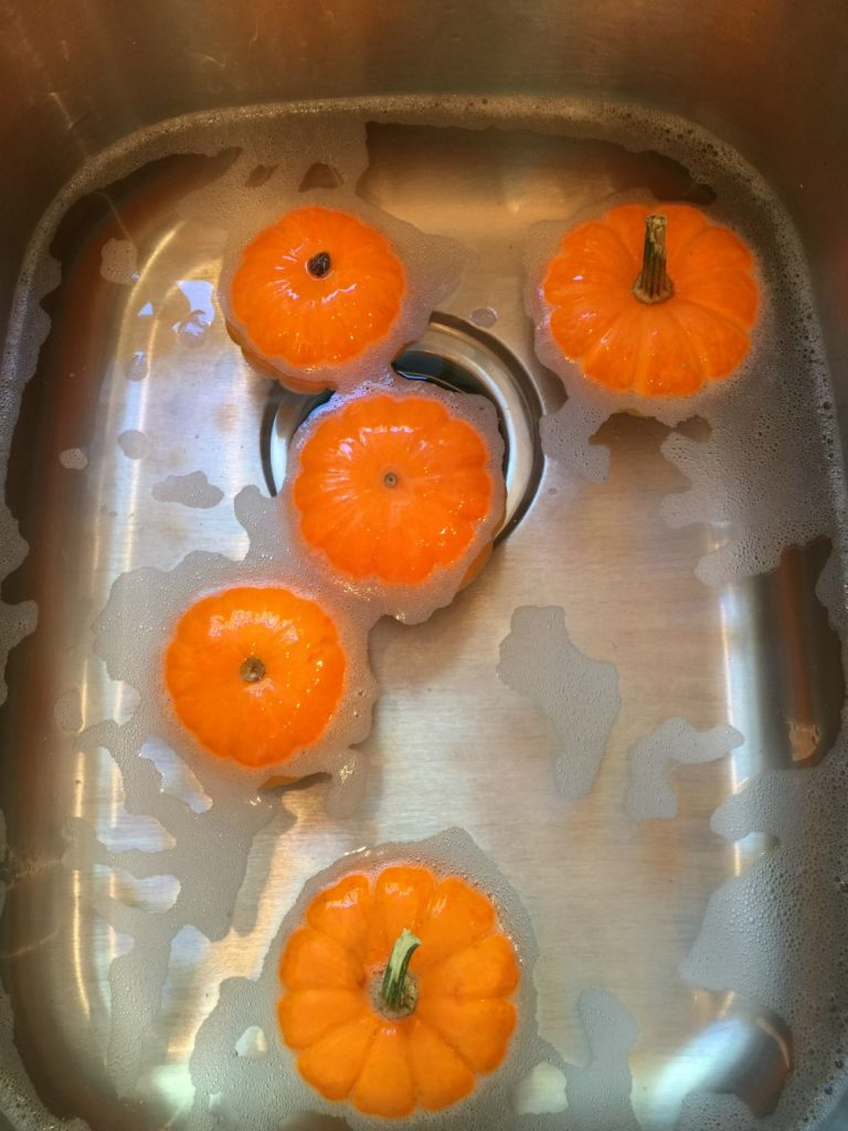 How To Paint Real Pumpkins Refresh Restyle