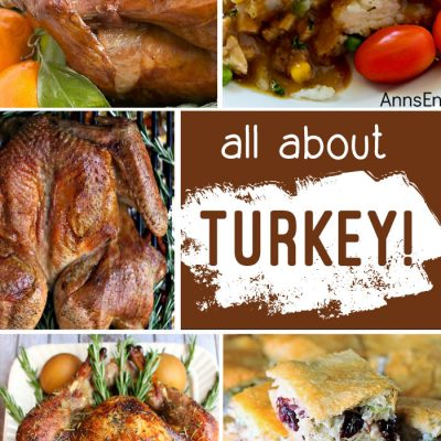 Turkey Recipes + Inspiration Monday