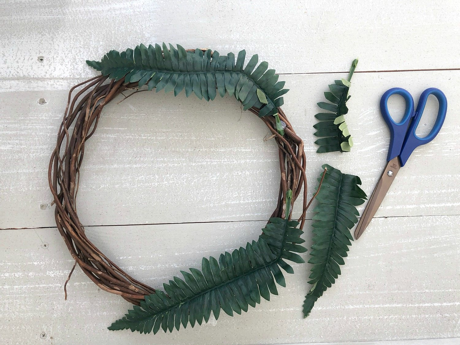 Glue and trim fern fronds