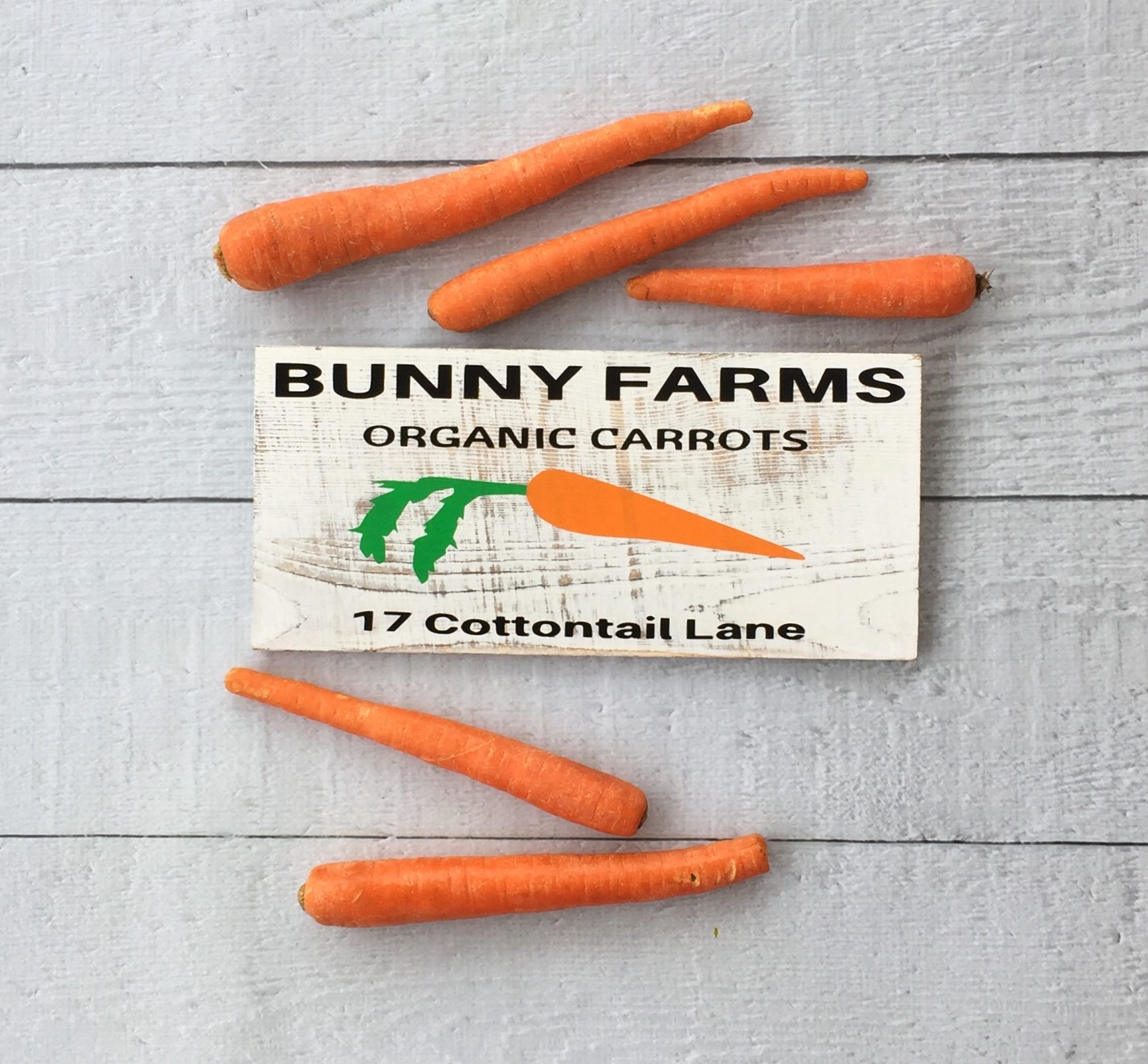 Carrots and bunny sign