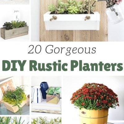 20 DIY Rustic Planter Ideas