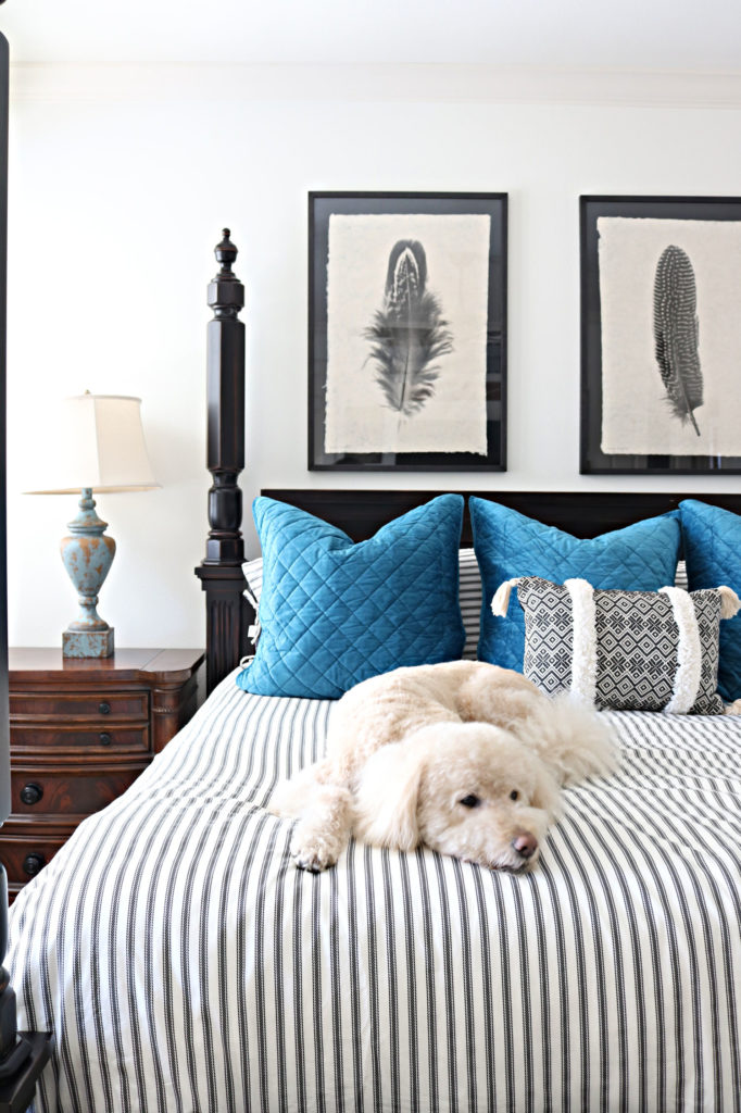 Murphy on the new bedding - quick bedding refresh with ticking strip duvet and blue euro shams.