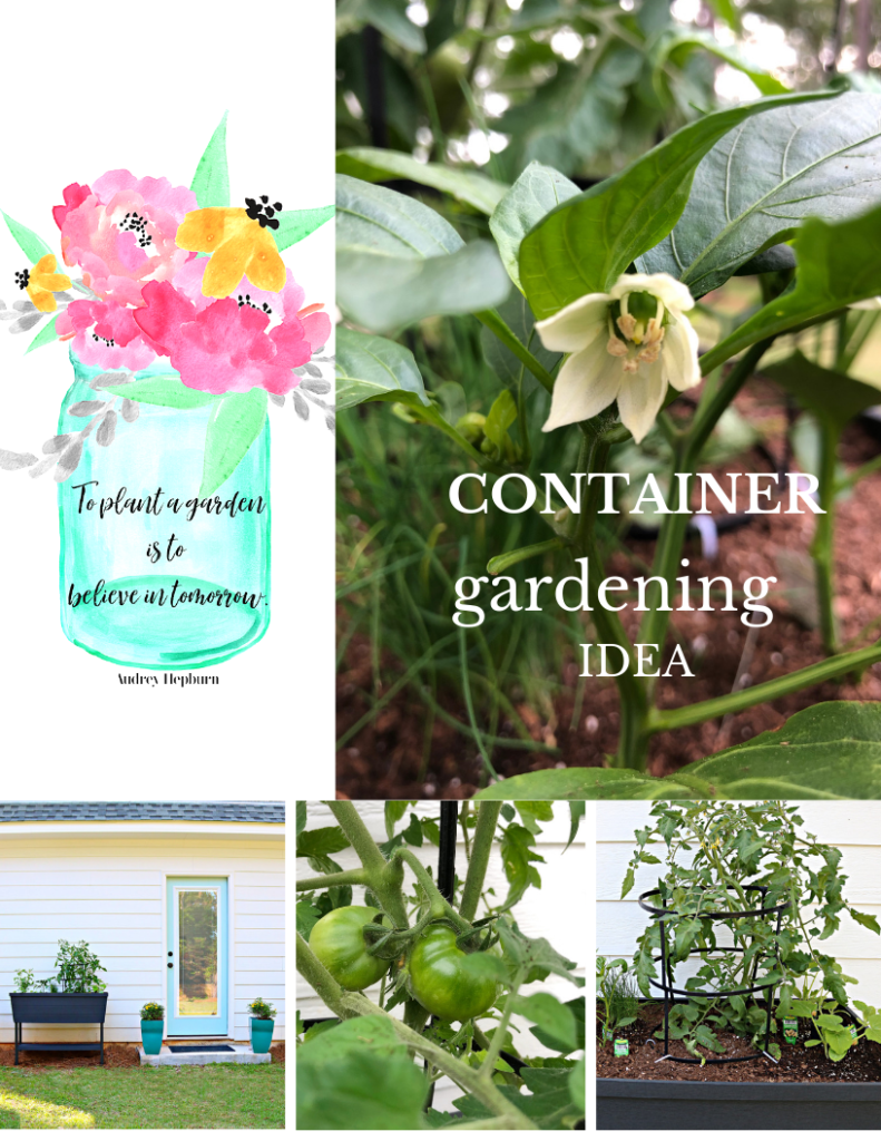 Container gardening is easy