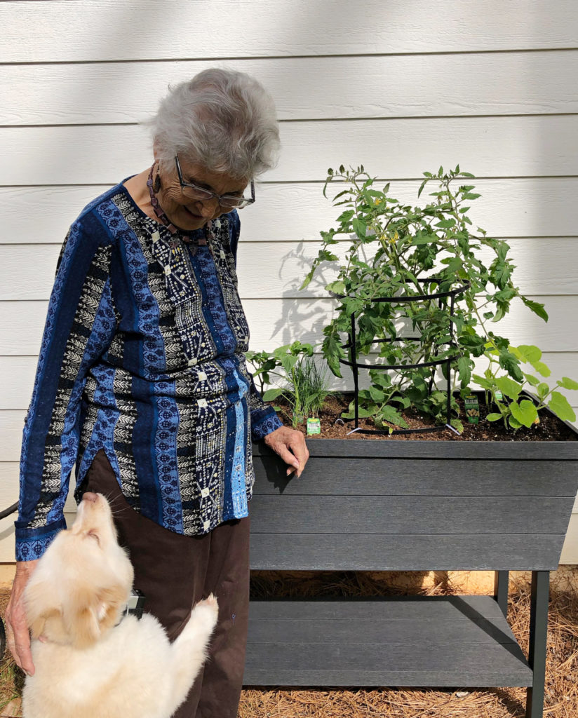 container garden tall option