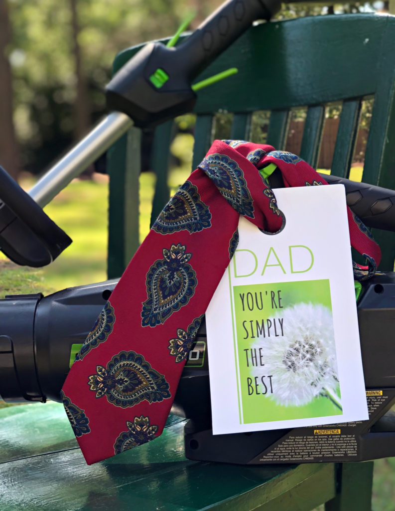 Father's Day Gift Tag + Giveaway