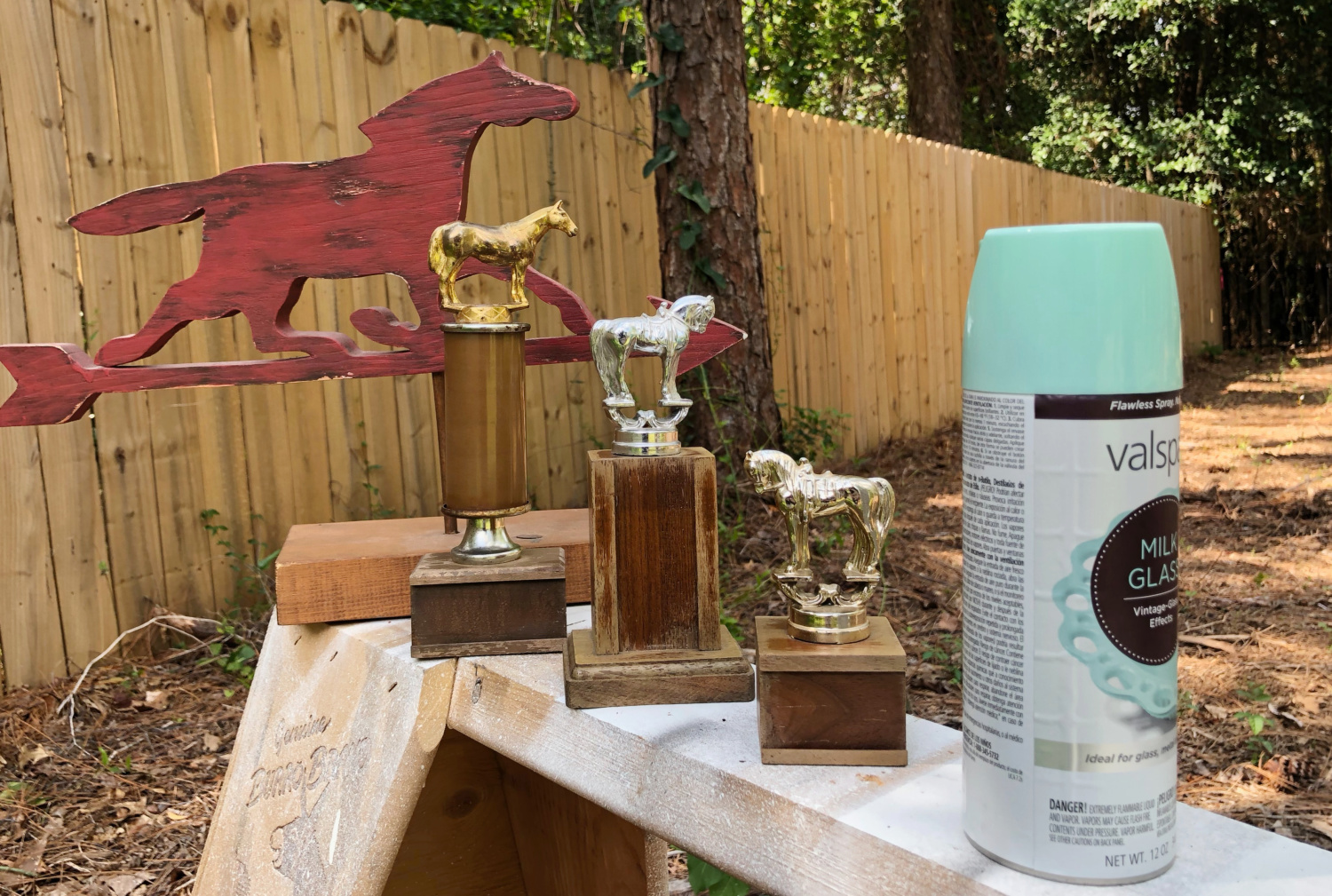 Trophy Makeover Spray Paint | Refresh Restyle