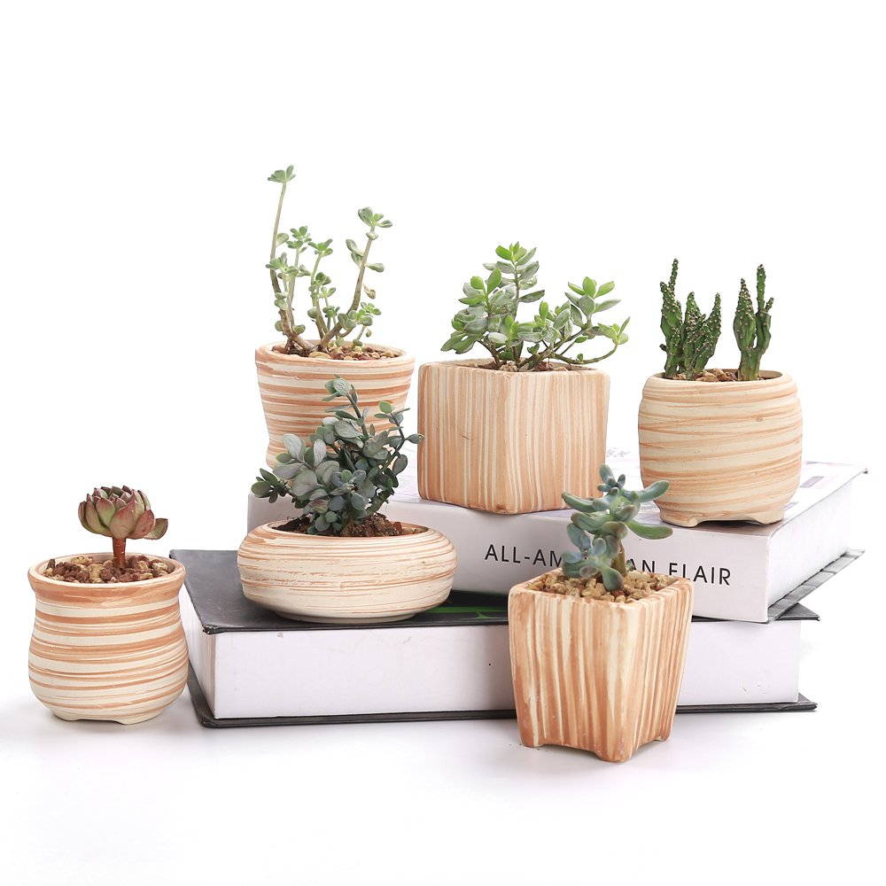 Ceramic Succulent Pots | The best holiday hostess ideas!