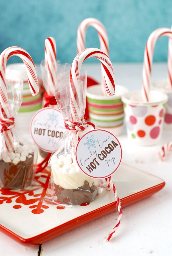 Candy Cane Hot Cocoa Pops | The best holiday homemade food gift ideas!